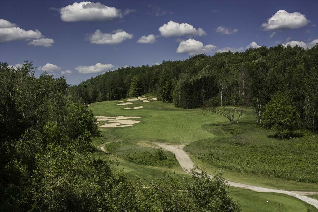 Black Forest, Wilderness Valley Sold In IRS Auction
